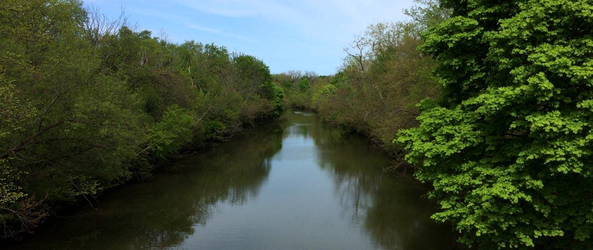 Evanston Habitat Project