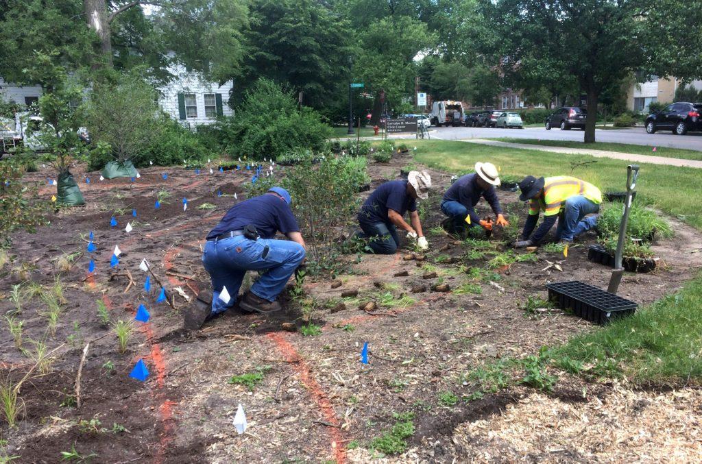 City crew planting Civic Center garden