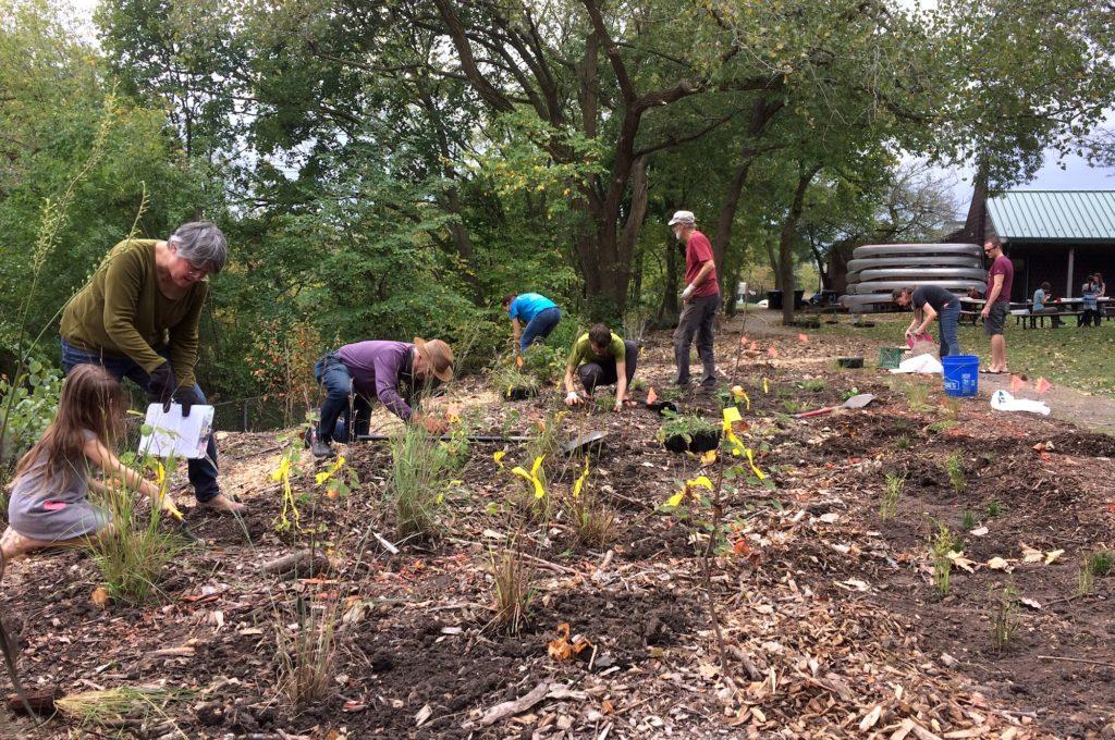 Planting at the Ladd Arboretum