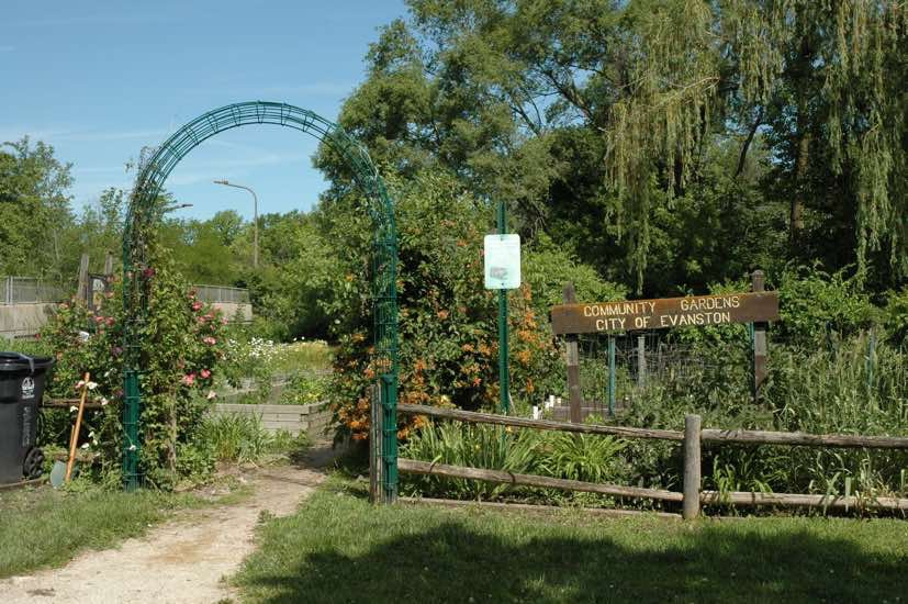 Twiggs Park Community Gardens